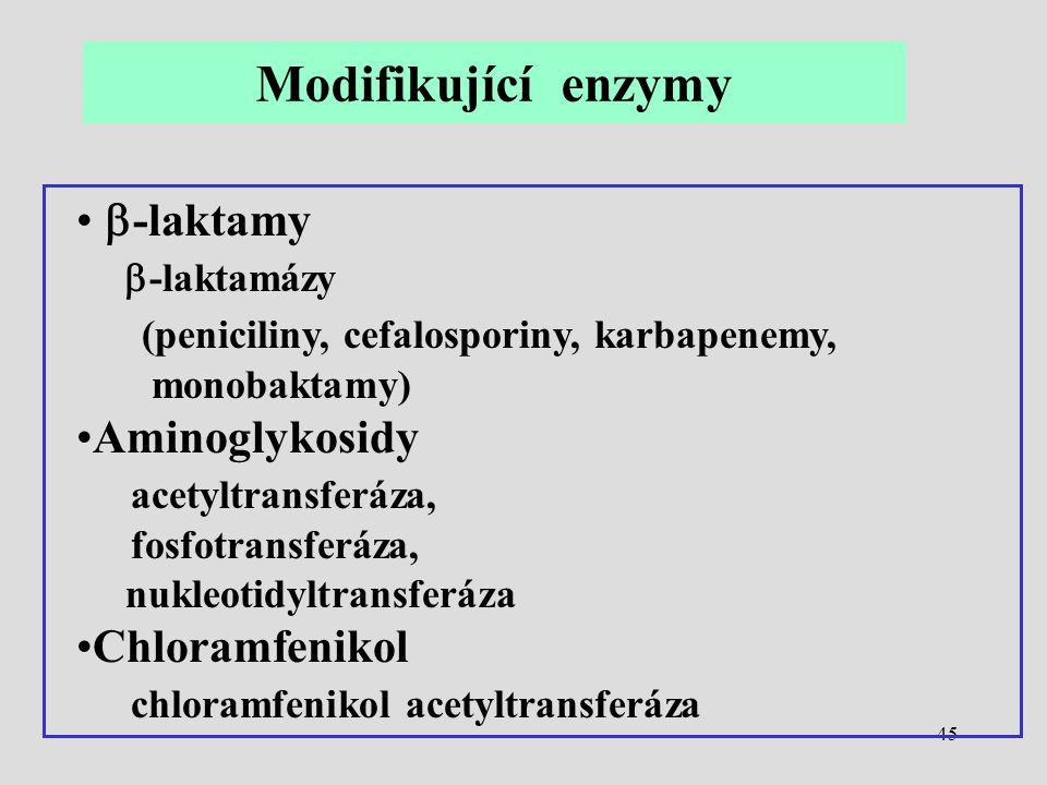 Modifikující enzymy b-laktamy