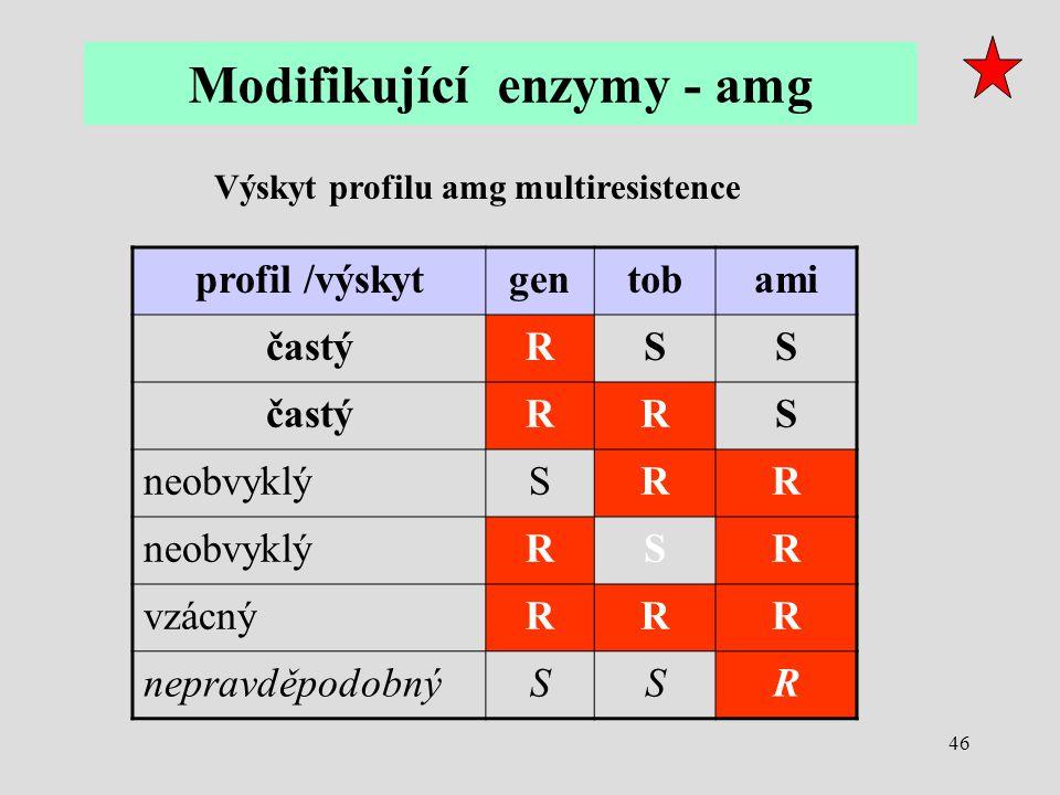 Modifikující enzymy - amg