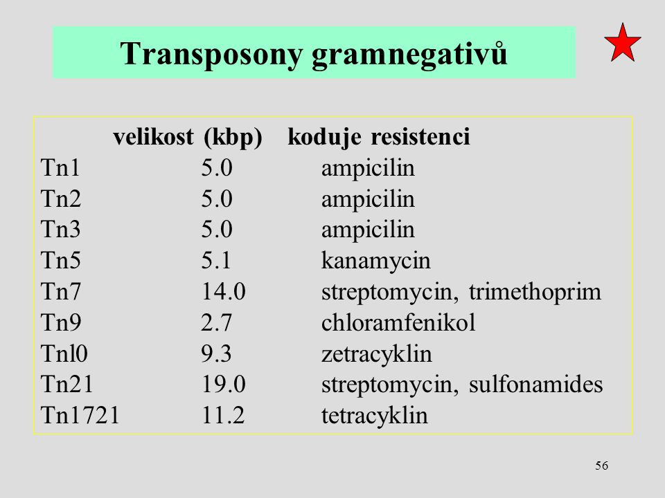Transposony gramnegativů