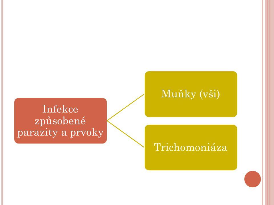 Infekce způsobené parazity a prvoky