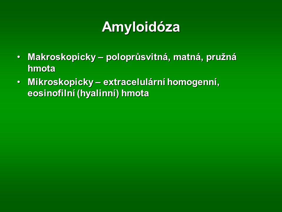Amyloidóza Makroskopicky – poloprůsvitná, matná, pružná hmota