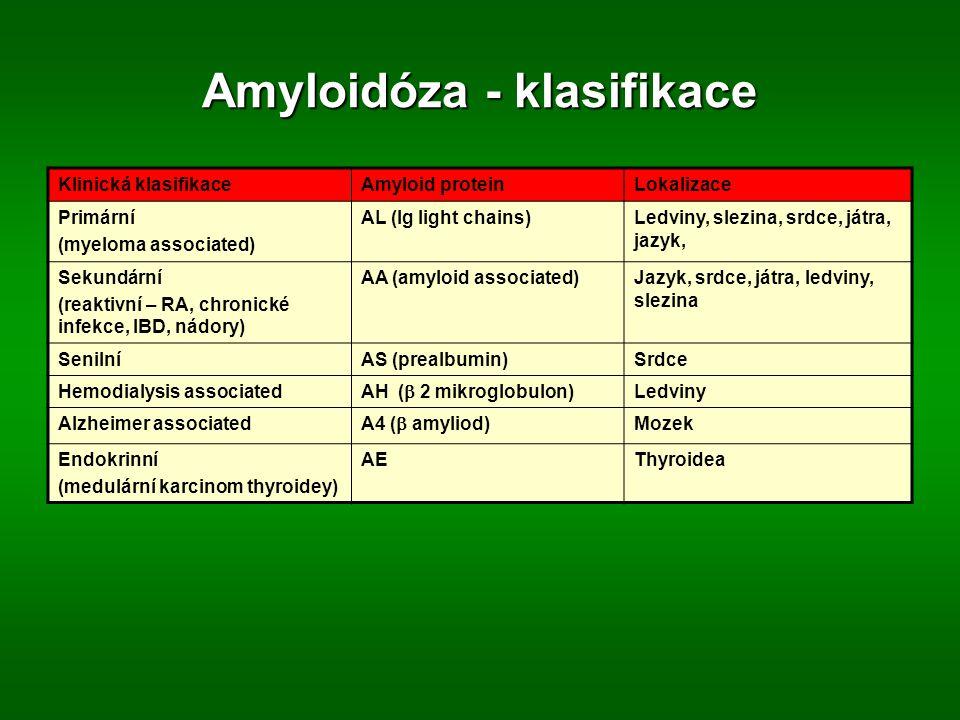 Amyloidóza - klasifikace