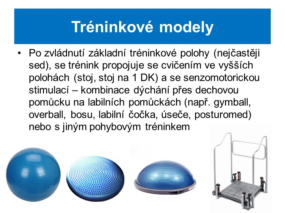 Tréninkové modely