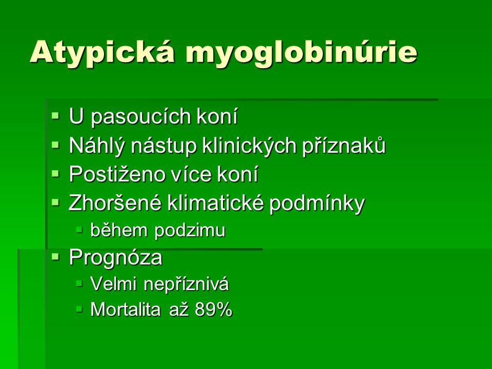 Atypická myoglobinúrie