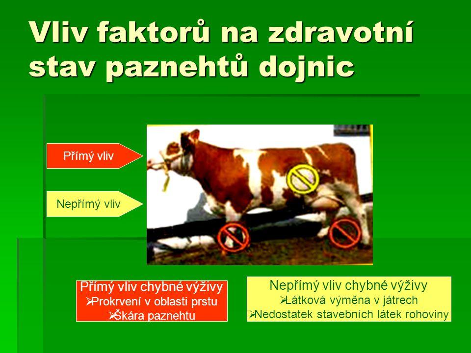 Vliv faktorů na zdravotní stav paznehtů dojnic