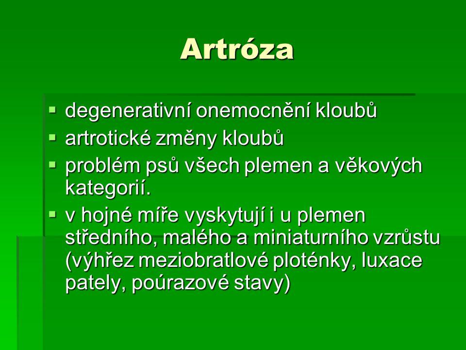 Artróza degenerativní onemocnění kloubů artrotické změny kloubů
