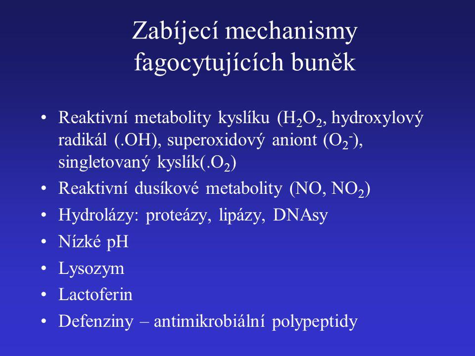 Zabíjecí mechanismy fagocytujících buněk
