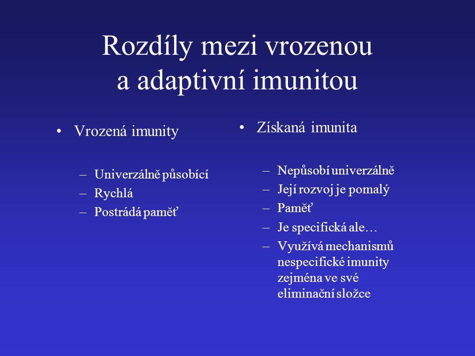 Rozdíly mezi vrozenou a adaptivní imunitou