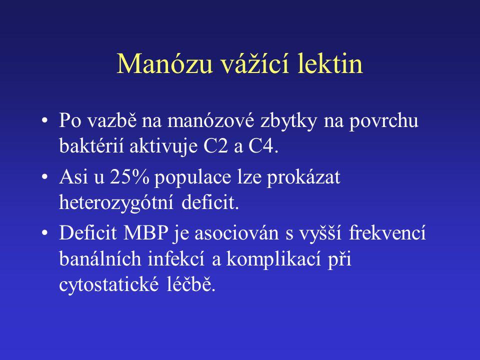 Manózu vážící lektin Po vazbě na manózové zbytky na povrchu baktérií aktivuje C2 a C4. Asi u 25% populace lze prokázat heterozygótní deficit.