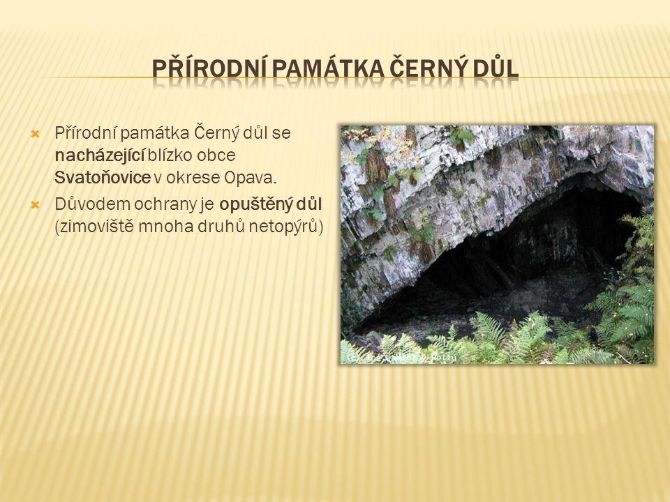 Přírodní Památka černý důl
