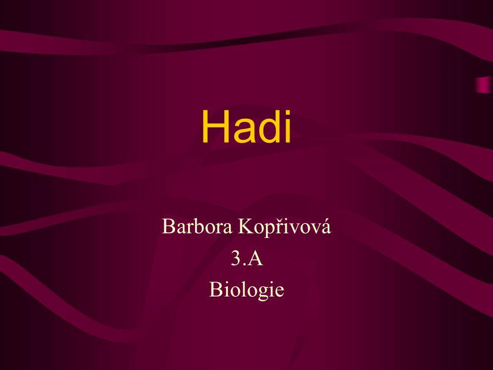 Barbora Kopřivová 3.A Biologie