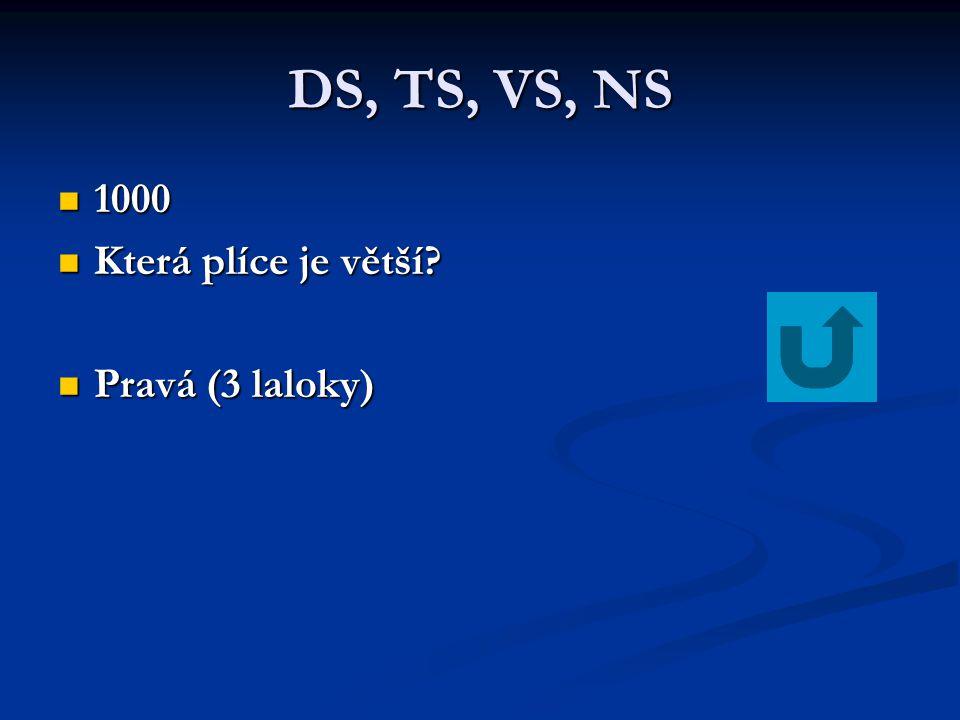DS, TS, VS, NS 1000 Která plíce je větší Pravá (3 laloky)