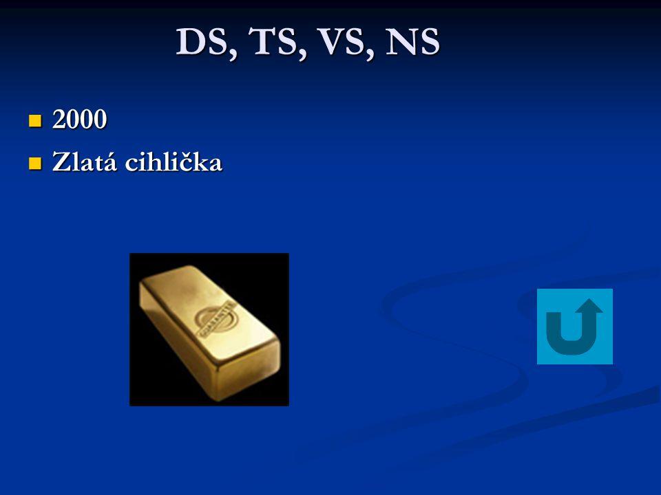 DS, TS, VS, NS 2000 Zlatá cihlička