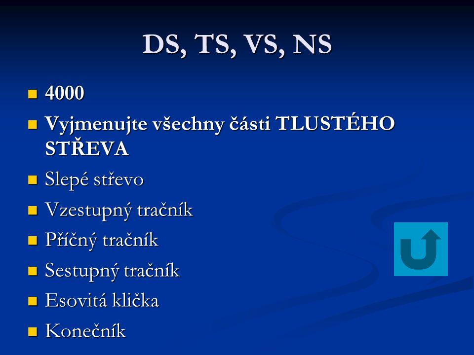DS, TS, VS, NS 4000 Vyjmenujte všechny části TLUSTÉHO STŘEVA