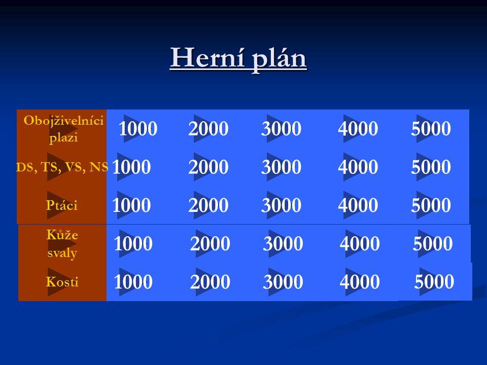Herní plán Obojživelníci. plazi. 1000. 2000. 3000. 4000. 5000. DS, TS, VS, NS. 1000. 2000.