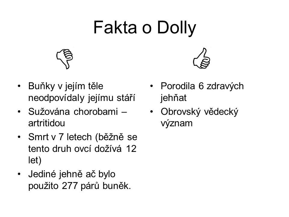 Fakta o Dolly Buňky v jejím těle neodpovídaly jejímu stáří