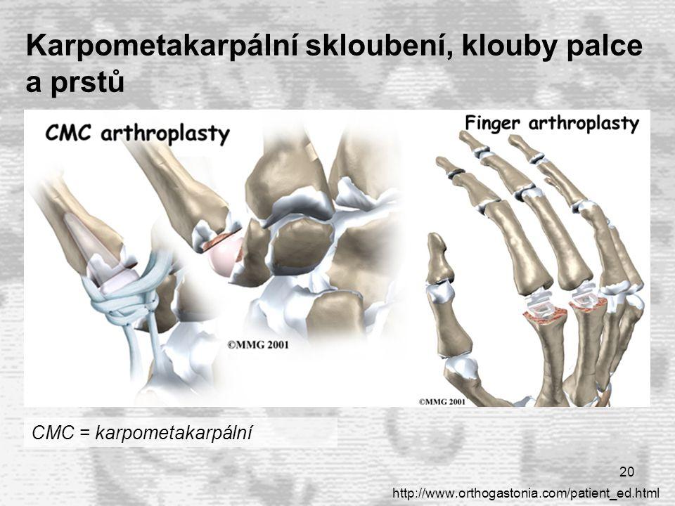 Karpometakarpální skloubení, klouby palce a prstů