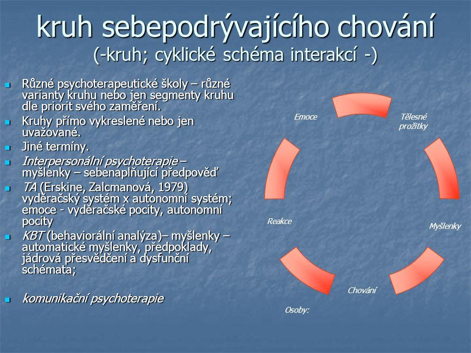 kruh sebepodrývajícího chování (-kruh; cyklické schéma interakcí -)