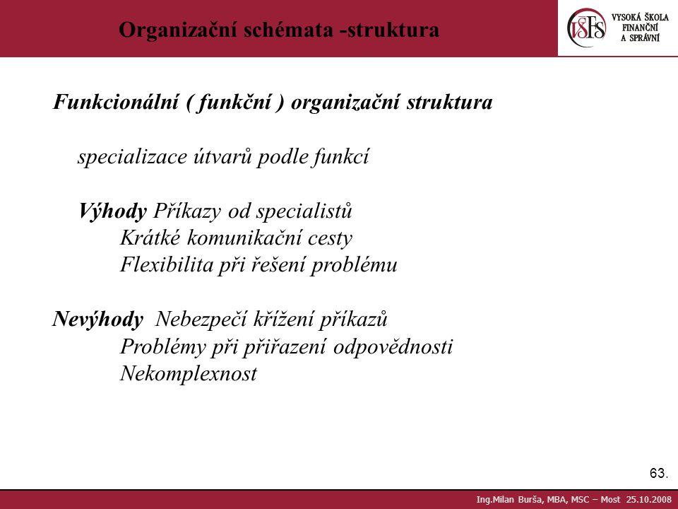 Organizační schémata -struktura