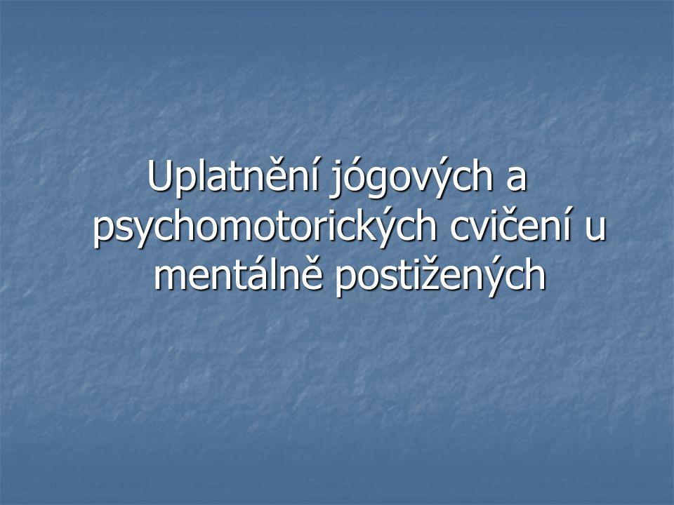 Uplatnění jógových a psychomotorických cvičení u mentálně postižených