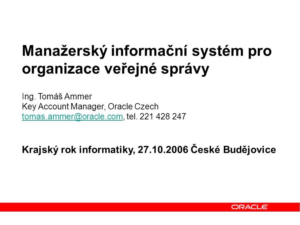 Manažerský informační systém pro organizace veřejné správy