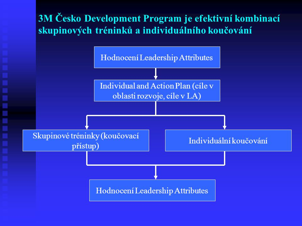 3M Česko Development Program je efektivní kombinací skupinových tréninků a individuálního koučování
