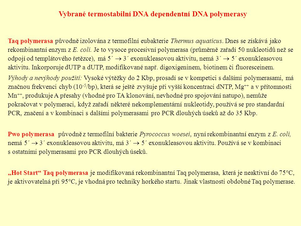 Vybrané termostabilní DNA dependentní DNA polymerasy