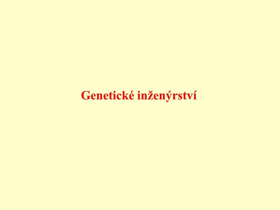 Genetické inženýrství