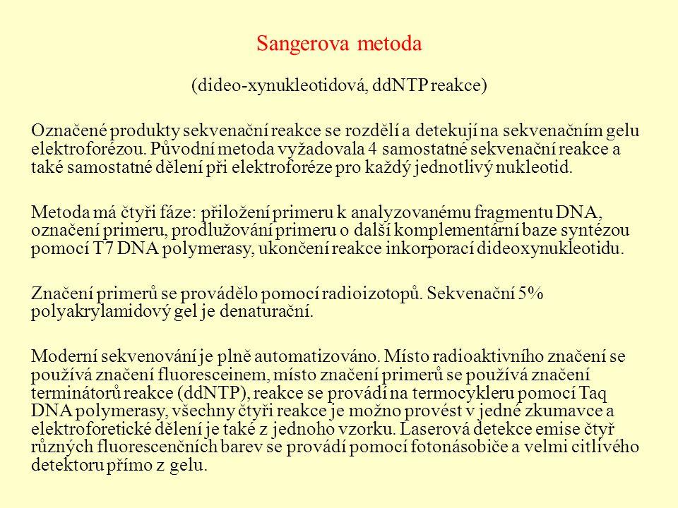 (dideo-xynukleotidová, ddNTP reakce)