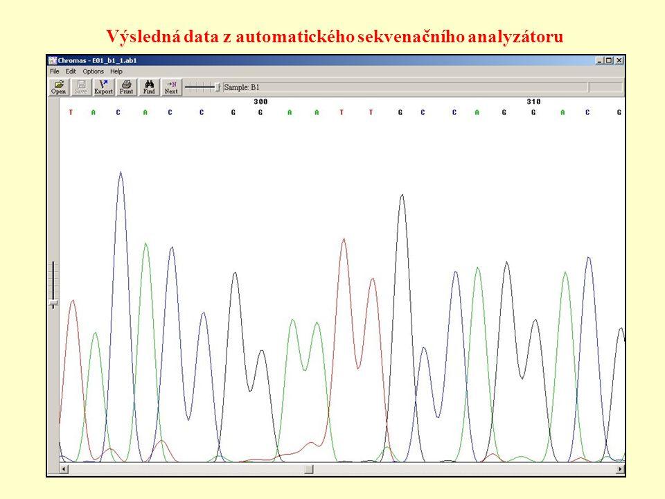 Výsledná data z automatického sekvenačního analyzátoru