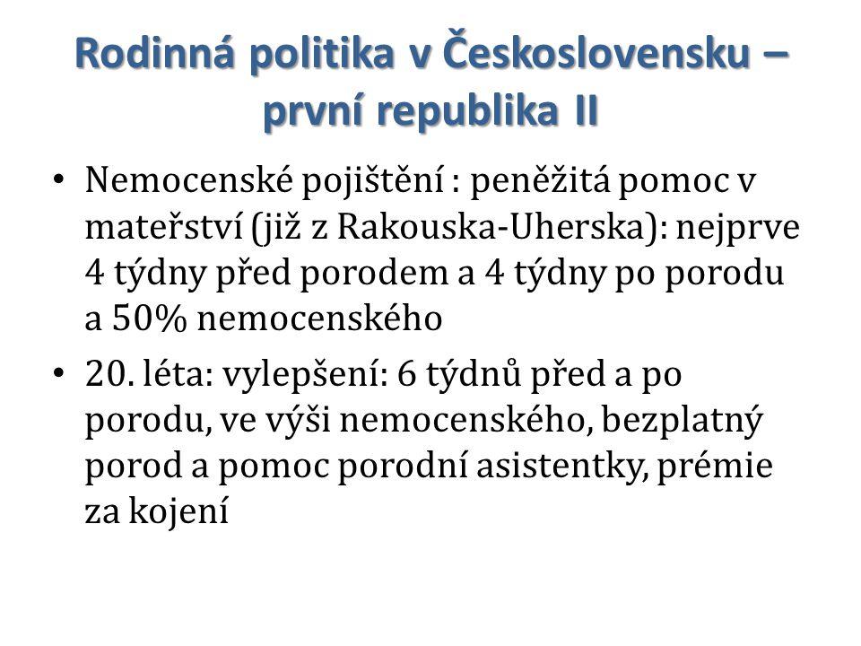 Rodinná politika v Československu – první republika II