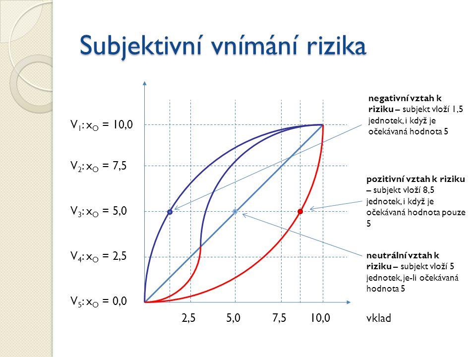 Subjektivní vnímání rizika
