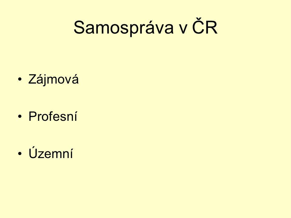 Samospráva v ČR Zájmová Profesní Územní