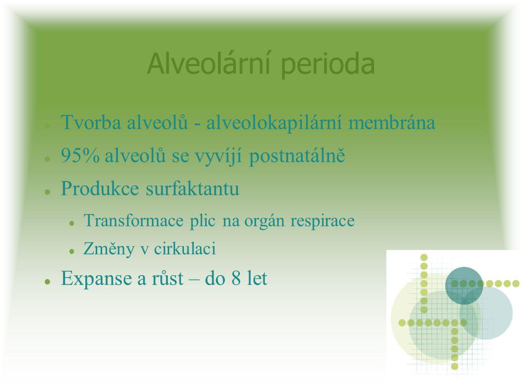 Alveolární perioda Tvorba alveolů - alveolokapilární membrána