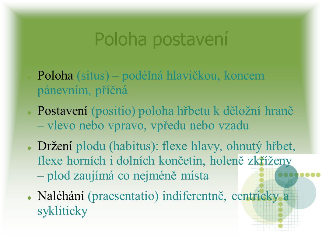 Poloha postavení Poloha (situs) – podélná hlavičkou, koncem pánevním, příčná.