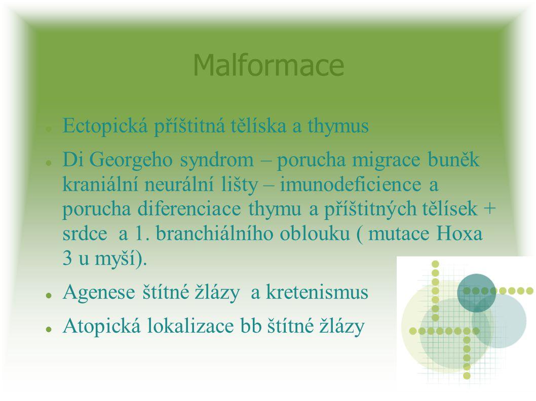 Malformace Ectopická příštitná tělíska a thymus