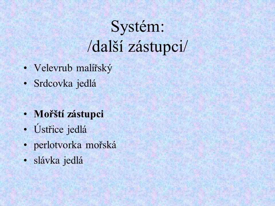 Systém: /další zástupci/