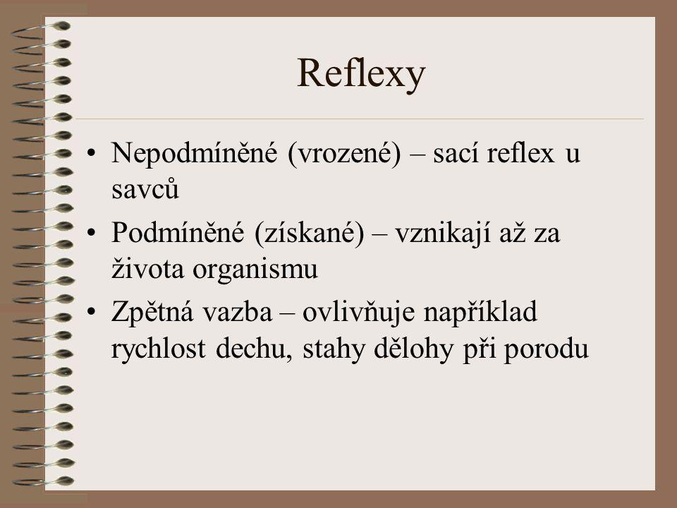 Reflexy Nepodmíněné (vrozené) – sací reflex u savců