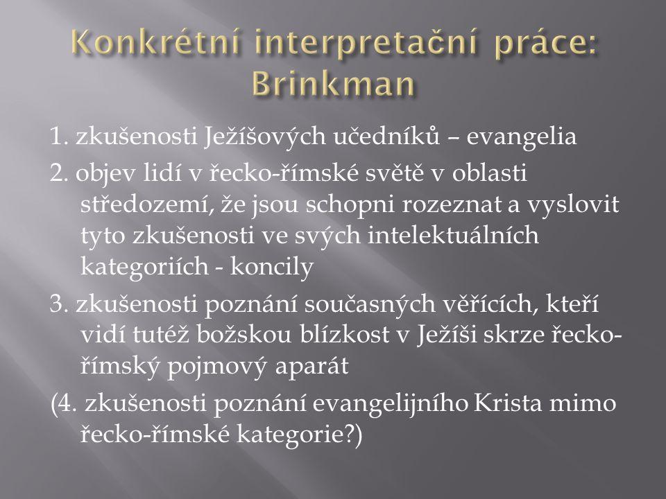 Konkrétní interpretační práce: Brinkman