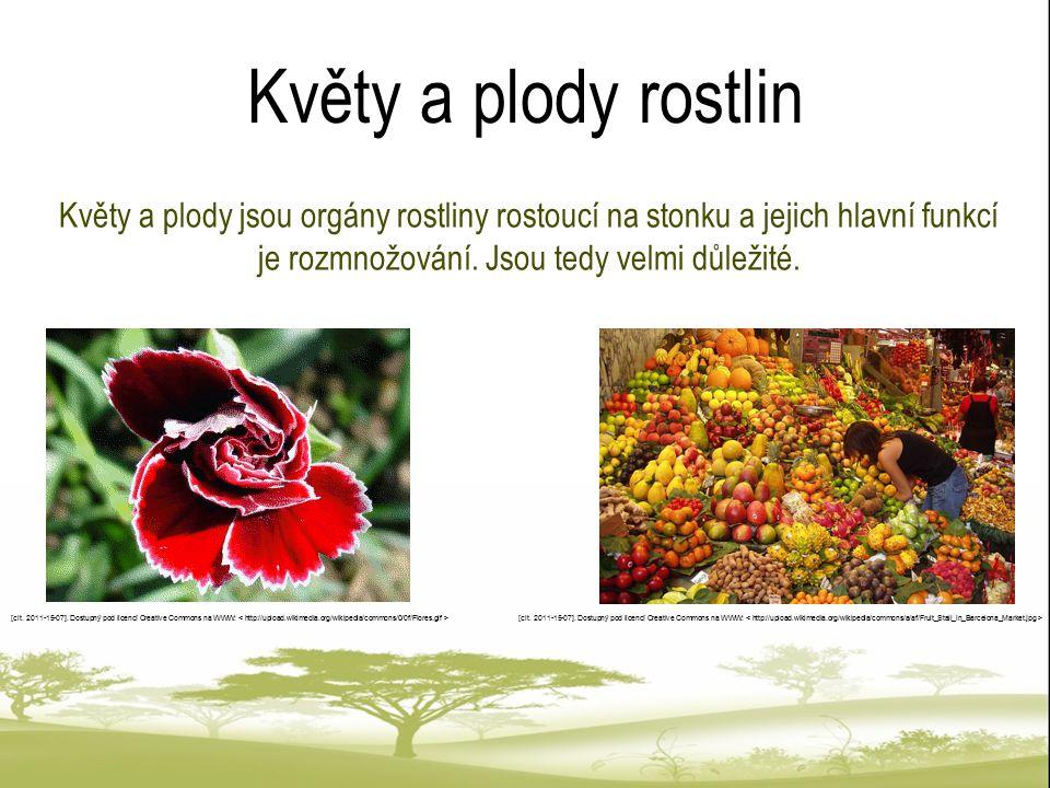 Květy a plody rostlin Květy a plody jsou orgány rostliny rostoucí na stonku a jejich hlavní funkcí je rozmnožování. Jsou tedy velmi důležité.
