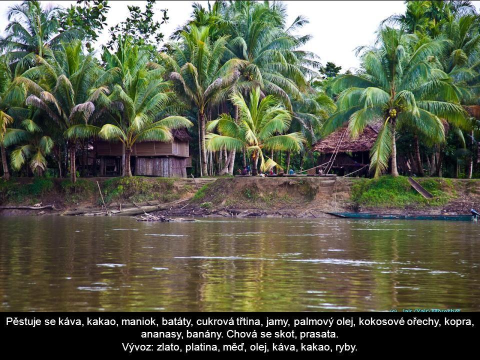 Pěstuje se káva, kakao, maniok, batáty, cukrová třtina, jamy, palmový olej, kokosové ořechy, kopra, ananasy, banány.