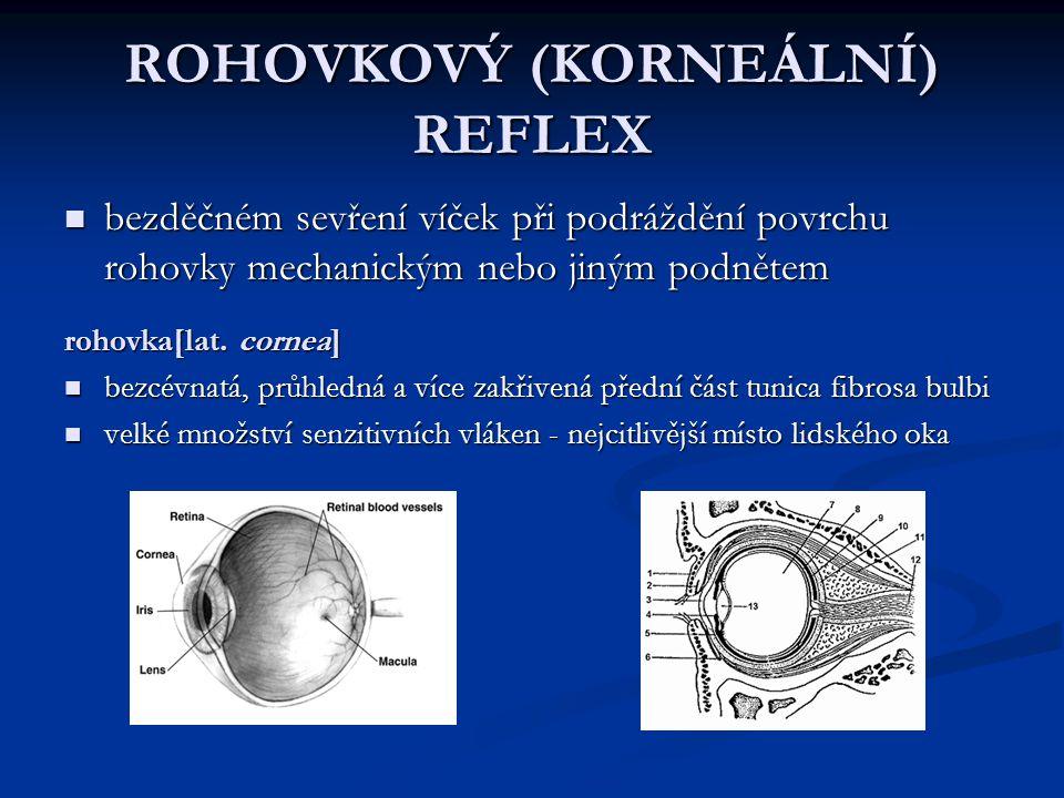 ROHOVKOVÝ (KORNEÁLNÍ) REFLEX