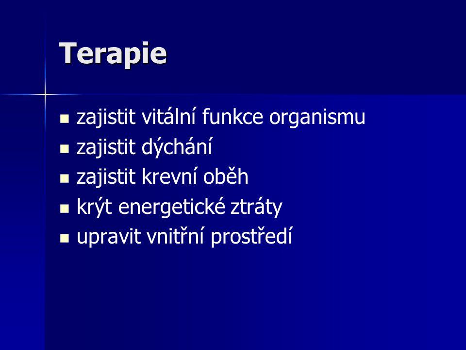 Terapie zajistit vitální funkce organismu zajistit dýchání