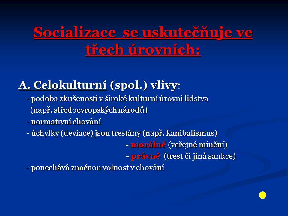 Socializace se uskutečňuje ve třech úrovních: