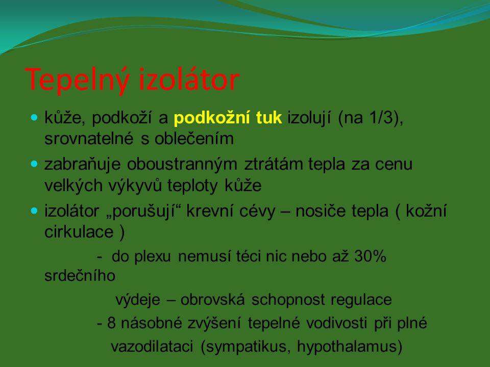 Tepelný izolátor kůže, podkoží a podkožní tuk izolují (na 1/3), srovnatelné s oblečením.