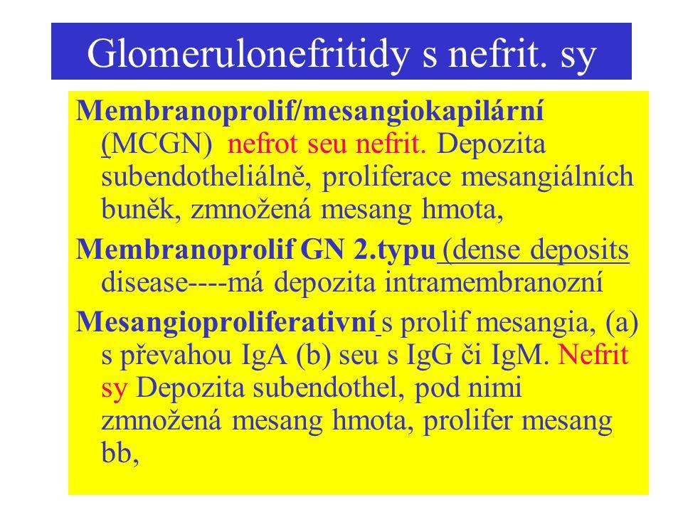 Glomerulonefritidy s nefrit. sy