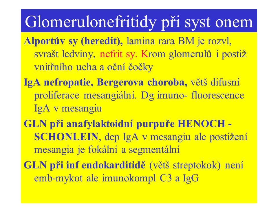 Glomerulonefritidy při syst onem