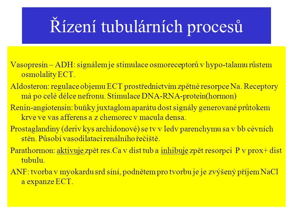 Řízení tubulárních procesů