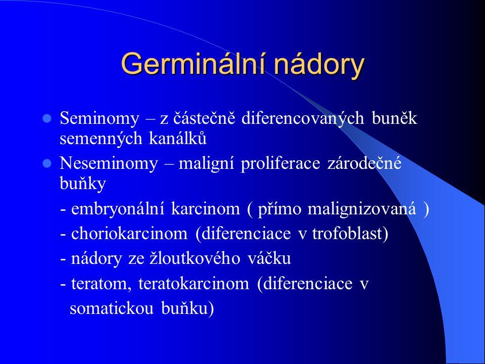 Germinální nádory Seminomy – z částečně diferencovaných buněk semenných kanálků. Neseminomy – maligní proliferace zárodečné buňky.