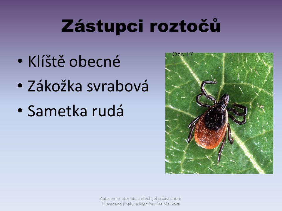 Zástupci roztočů Klíště obecné Zákožka svrabová Sametka rudá Obr. 17